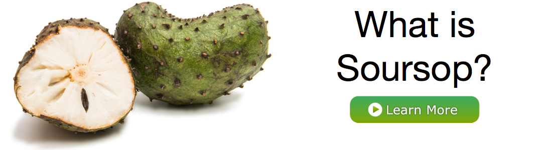 What is Soursop